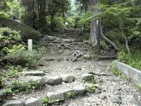 tsukuba1